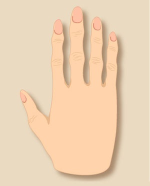 Do You Know There Are Five Types Of Hands And Each Has Different Meaning? Find Out Yours