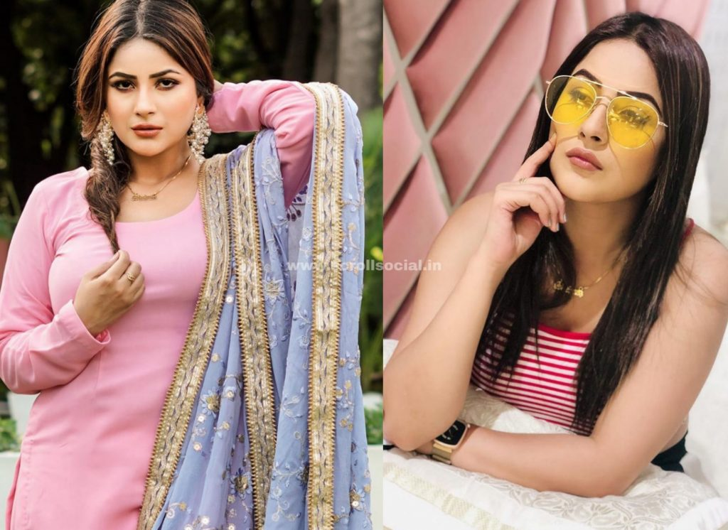 Shehnaaz Gill Blames Herself For Signing MSK, Says 'I Was The Reason For My Loss In Big Boss 13, I Blew It Up'
